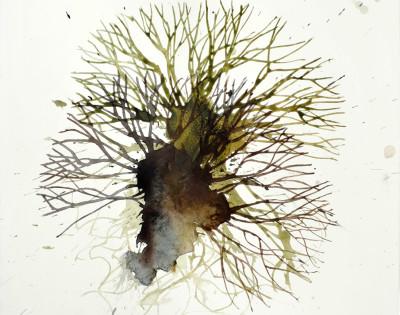 Michael Porter Seaweed 16-02-14