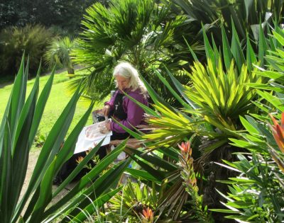 Artist Kate Walters working during Wet Auction 2016 at Tremenheere Sculpture Garden