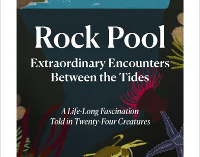 Book Cover Rock Pool : Extraordinary Encounters Between the Tides By Heather Buttivant